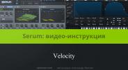 Velocity в синтезаторе Serum